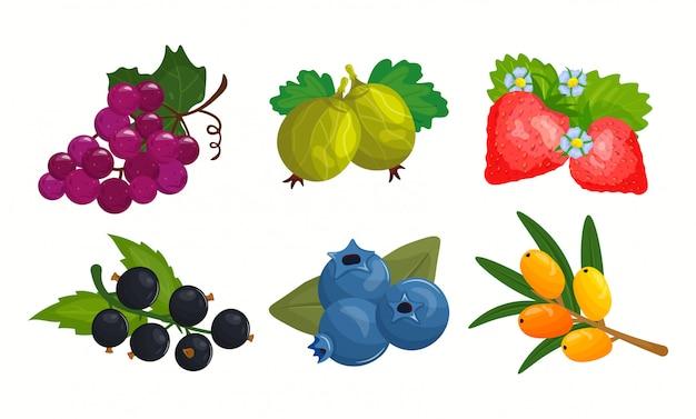 Ensemble de dessin animé de baies et fruits