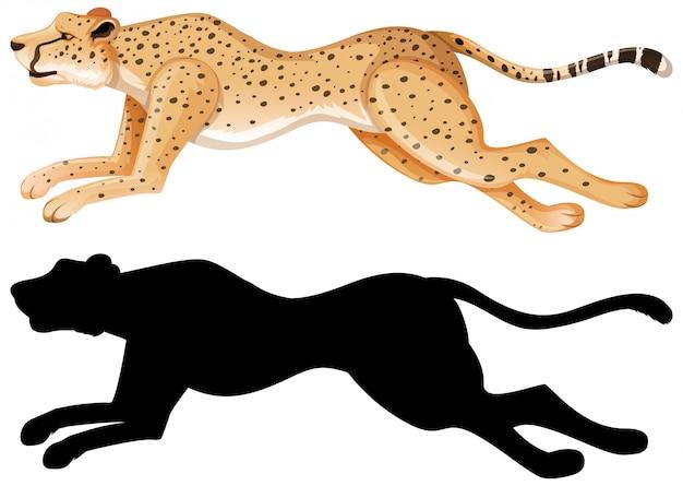 Ensemble de dessin animé de guépard