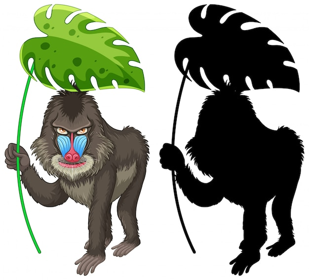 Ensemble de dessin animé de mandrill et sa silhouette