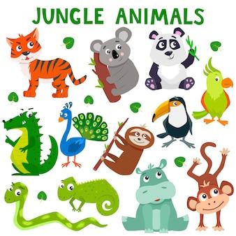 Ensemble, de, dessin animé, mignon, jungle, animaux