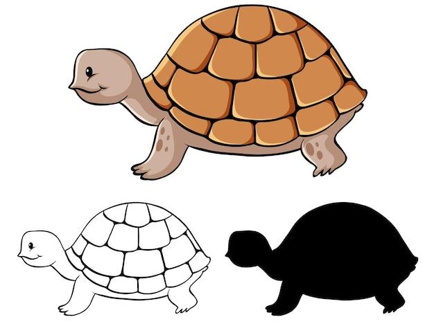 Ensemble de dessin animé de tortue