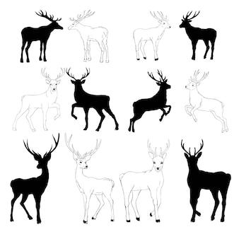 Ensemble de dessin de cerf