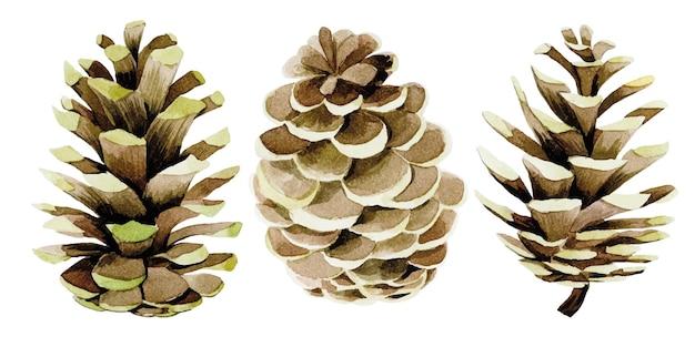 Ensemble de dessins à l'aquarelle avec décoration de pommes de pin pour le nouvel an noël