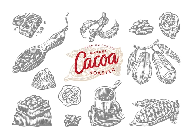 Ensemble de dessins de cacao torréfié