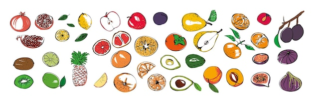 Un ensemble de différentes icônes de fruits de saison sur un fond blanc isolé.