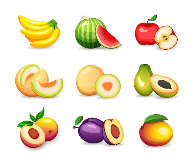 Ensemble de différents fruits tropicaux sur fond blanc, illustration dans le style
