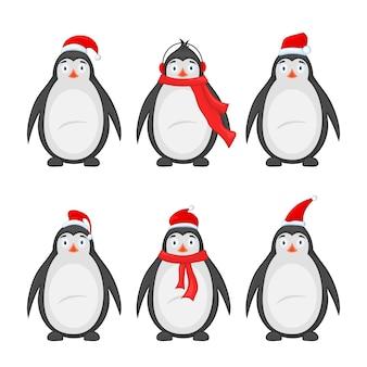 Ensemble de différents pingouins