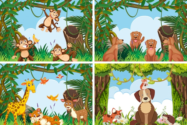 Ensemble de divers animaux dans des scènes de la nature