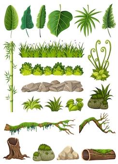 Ensemble de divers objets de la jungle