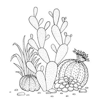 Ensemble de doodle dessinés à la main de cactus et succulentes