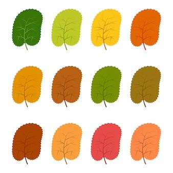 Ensemble de douze feuilles d'automne dans différentes couleurs d'automne. illustration vectorielle.