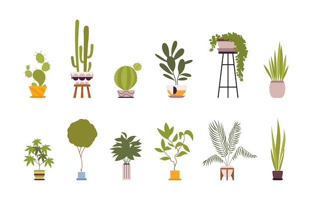 Ensemble de douze plantes de sol vertes dans des pots rétro