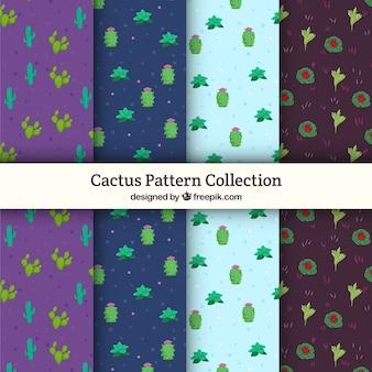 Ensemble drôle de motifs de cactus