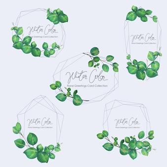 Ensemble du cadre de feuilles vertes.