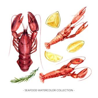 Ensemble d'écrevisses aquarelles isolées, illustration de homard à des fins décoratives.