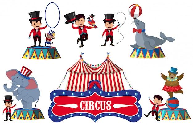 Un ensemble d'élément de cirque