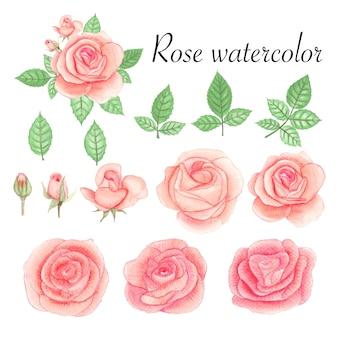 Ensemble d'éléments aquarelles roses.
