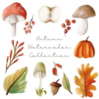 Ensemble d'éléments d'automne aquarelle