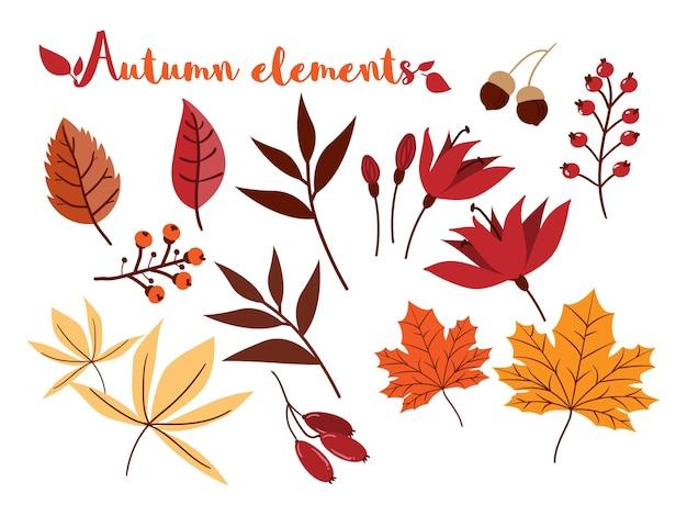 Ensemble d'éléments automne isolé sur fond blanc.