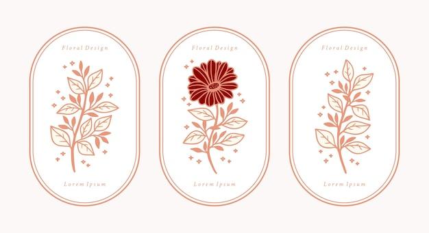 Ensemble d'éléments de branche de fleur et feuille de gerbera botanique rose vintage dessinés à la main
