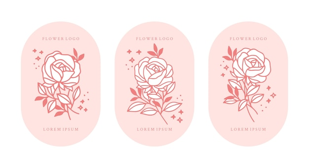 Ensemble d'éléments de branche fleur et feuille rose botanique vintage dessinés à la main pour logo féminin et marque de beauté