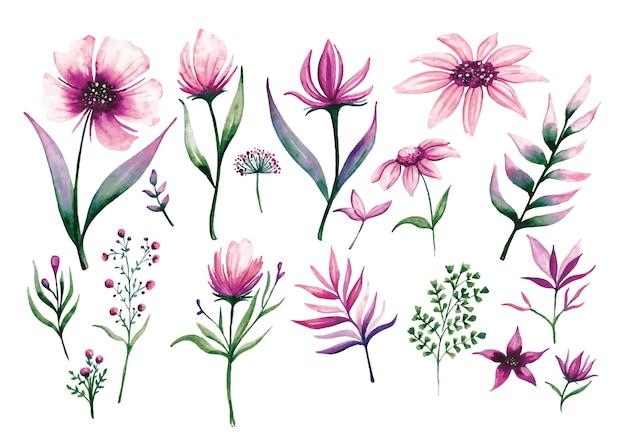 Ensemble d'éléments de conception florale dans un style aquarelle