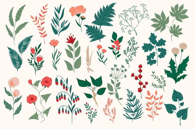 Ensemble d'éléments décoratifs floraux dessinés à la main, feuilles, fleurs, herbes et branches