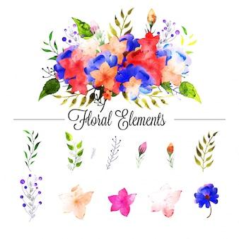 Ensemble d'éléments floraux en couleurs d'aquarelle.