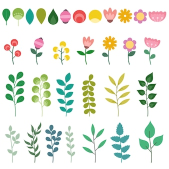 Ensemble d'éléments floraux isolés