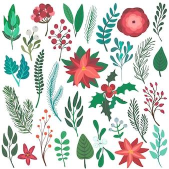 Ensemble d'éléments floraux de noël colorés fleurs d'hiver branches baies