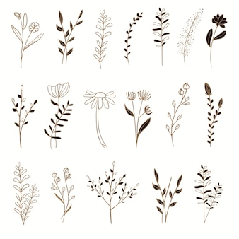 Ensemble d'éléments floraux or avec illustration de style dessiné à la main