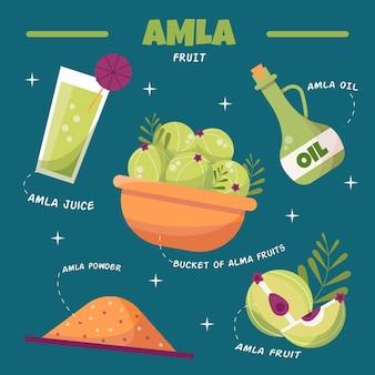 Ensemble d'éléments de fruits amla dessinés à la main