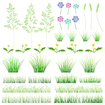 Ensemble d'éléments d'herbe verte. buissons, pissenlits, fleurs et épillets sur fond blanc