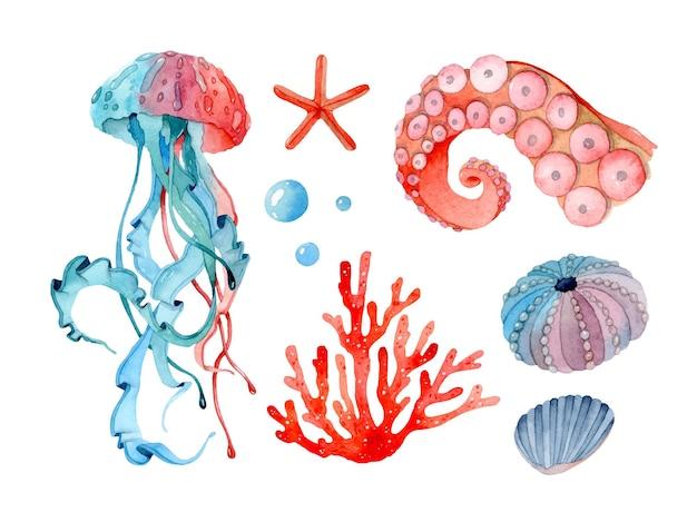 Ensemble d'éléments isolés à l'aquarelle de la mer tropicale de méduses