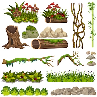 Un ensemble d'éléments de la nature