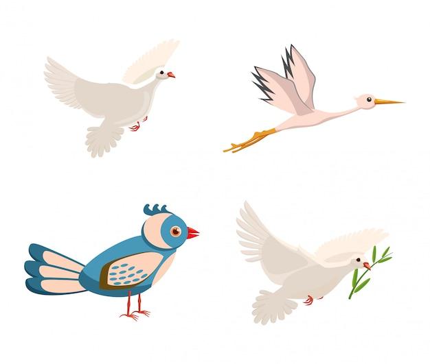 Ensemble d'éléments d'oiseaux. jeu de dessin d'oiseau