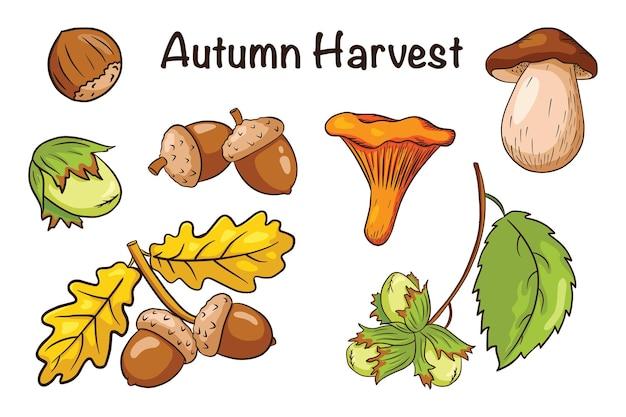 Ensemble d'éléments de récolte d'automne. feuilles de chêne, glands, noisette, champignons. collection d'éléments décoratifs forestiers pour la conception et la décoration d'impressions, d'autocollants, d'invitations et de cartes de vœux. vecteur premium