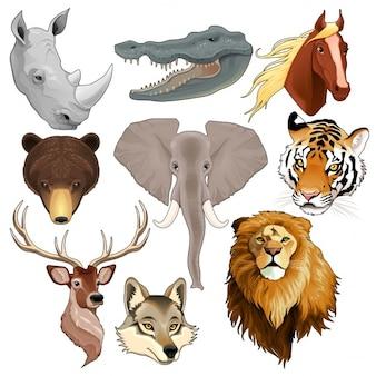 Ensemble d'éléments têtes d'animaux vecteur isolé