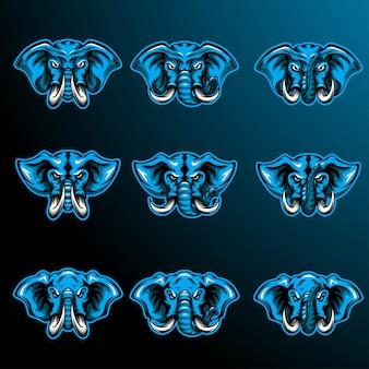 Ensemble d'éléphants à tête bleue