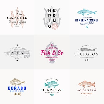 Ensemble d'emblèmes de fruits de mer de qualité supérieure