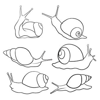 Ensemble d'escargot dessiné à la main