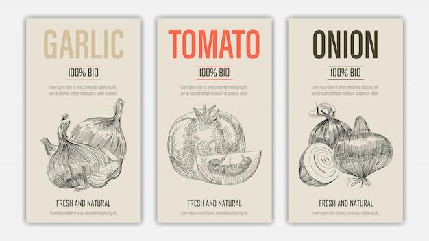 Ensemble d'étiquette de modèle avec l'ail, la tomate et l'oignon dans un style rétro vintage dessiné ou croquis à la main.