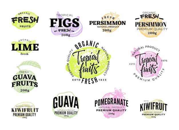 Ensemble d'étiquettes d'aliments exotiques de différents fruits tropicaux colorés dans le style de croquis isolé