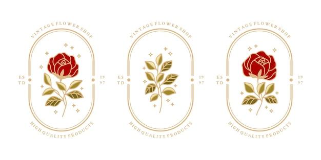 Ensemble d'étiquettes botaniques vintage avec fleur rose et feuilles