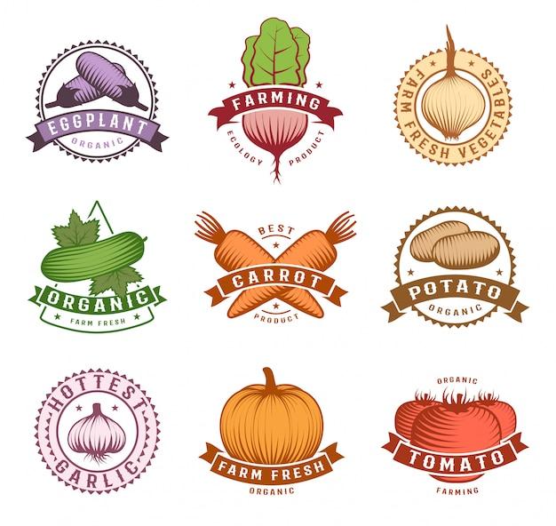 Ensemble d'étiquettes colorées de légumes