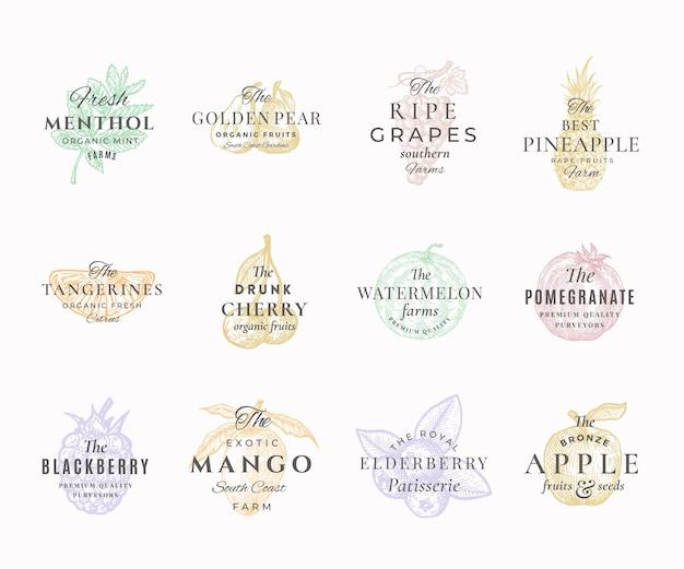 Ensemble d'étiquettes élégantes de fruits, baies et épices de qualité supérieure. signes abstraits, symboles ou modèles de logo. croquis de nourriture dessinés à la main avec typographie rétro. collection d'emblèmes vintage.