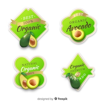 Ensemble d'étiquettes de fruits biologiques réalistes