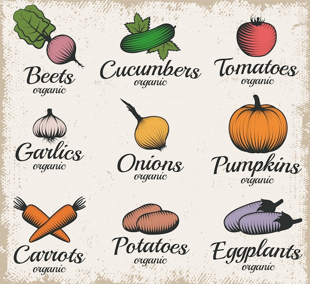 Ensemble d'étiquettes de légumes de style rétro
