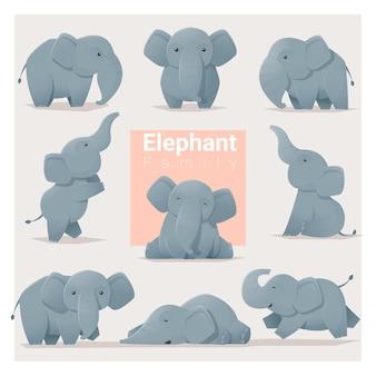 Ensemble de la famille des éléphants