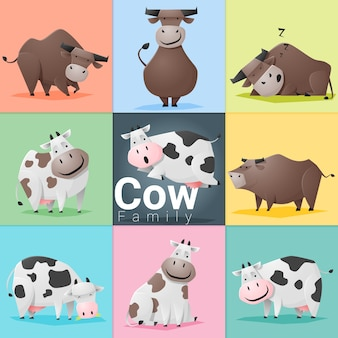 Ensemble de la famille des vaches